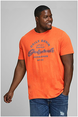 Sport, Camisetas M. Corta, 110231, NARANJA