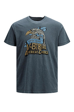 Sport, Camisetas M. Corta, 110531, INDIGO