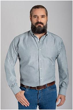Camisas, Sport Manga Larga, 110639, VERDE