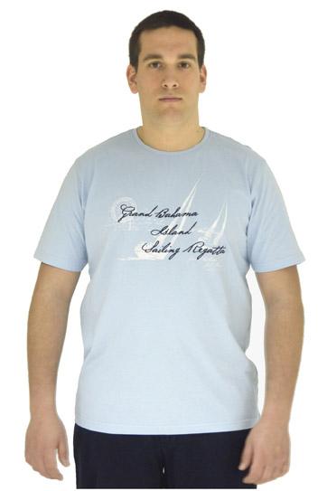 Sport, Camisetas M. Corta, 106536, CELESTE
