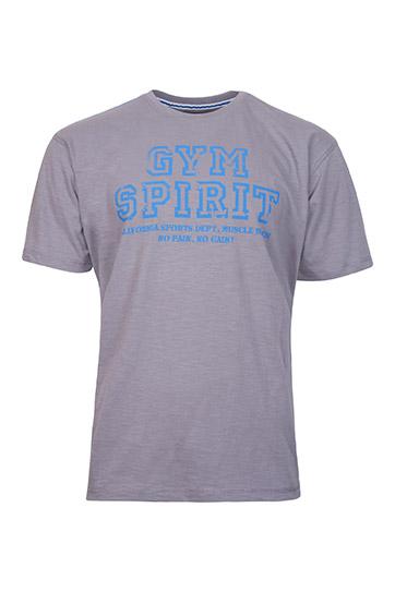 Sport, Camisetas M. Corta, 109108, GRIS MEDIO